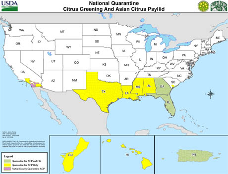 nationalquarantinemap-citrus-greening-and-asian-psyllid1.jpg