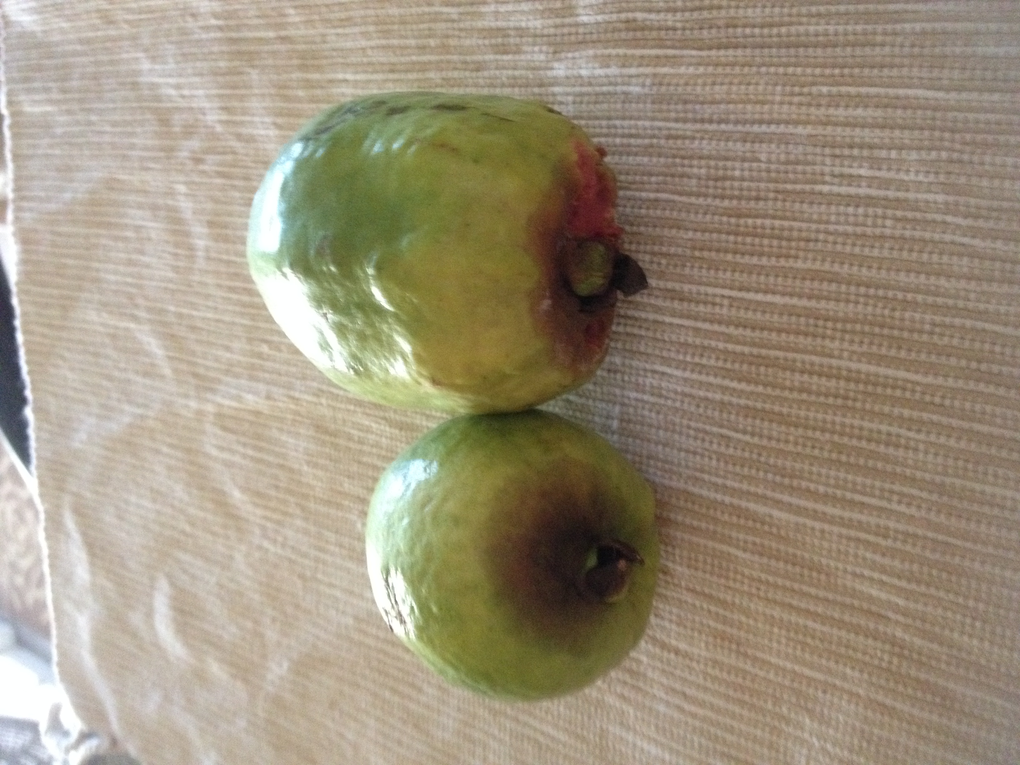 None of the guavas turn out perfect.