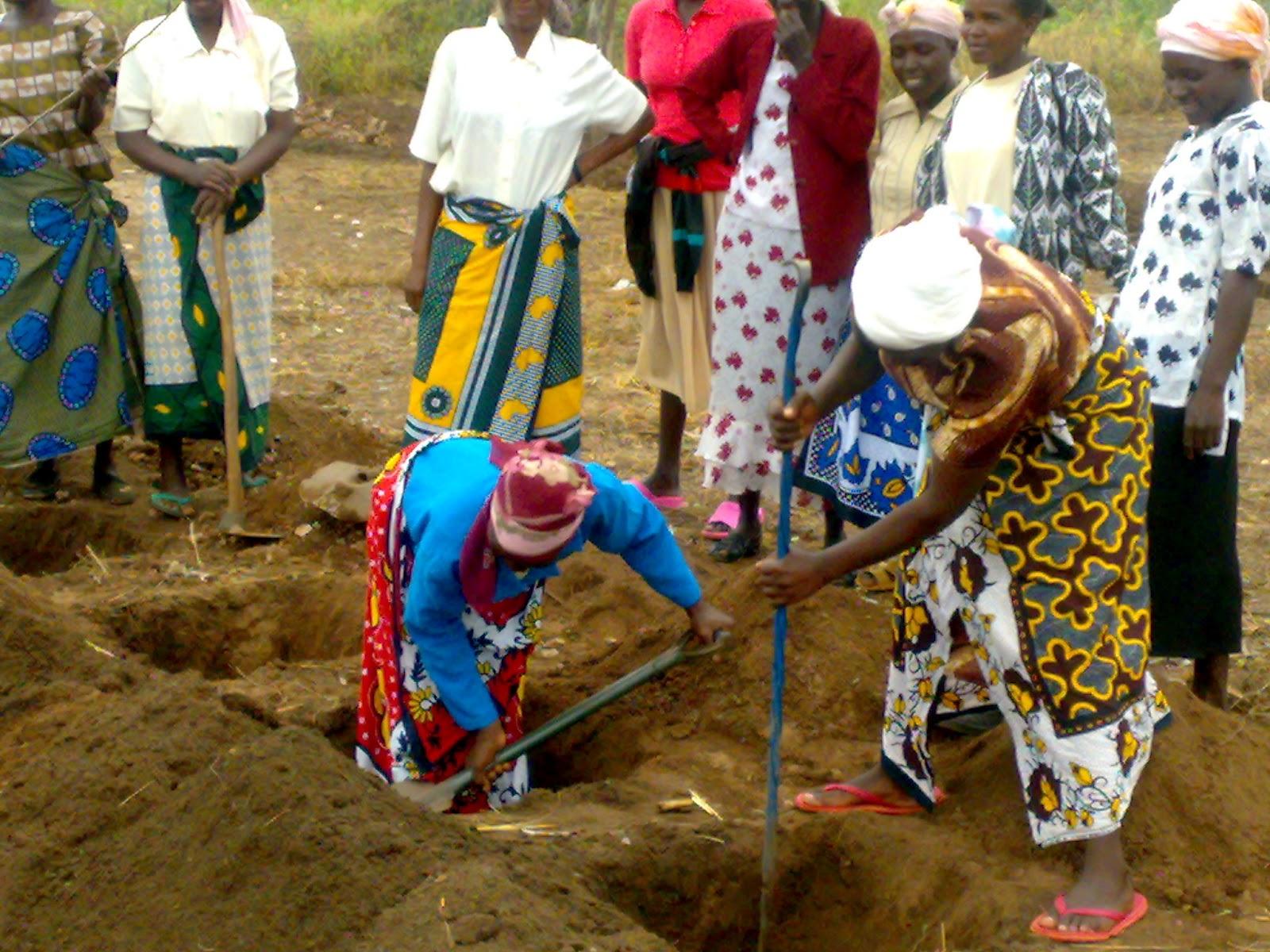 Women_digging_Modified_Zai_pit_holes_in_Mivukoni__Kyuso__Kenya.jpg