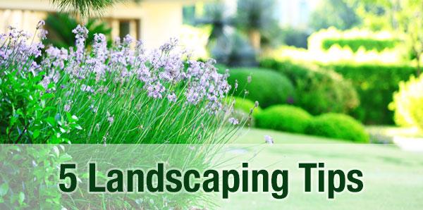 landscaping-tips.jpg